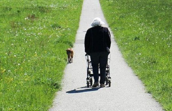 Cómo usar andadores para ancianos
