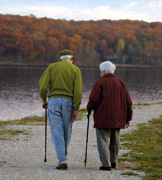 Conclusiones y Cuál Bastón para Ancianos Comprar