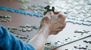 Cuál Puzzle de 1500 Piezas para Adultos Comprar
