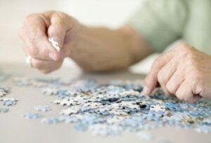 Puzzle de 1500 Piezas para Adultos - Comparativa