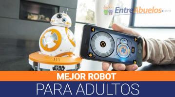 Robots para Adultos